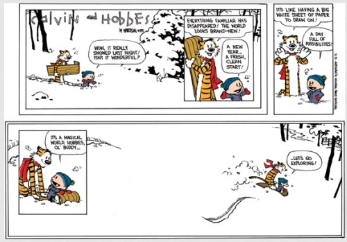 Calvin And Hobbes New Adventure